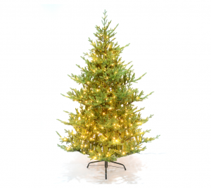 2.1m Tree2