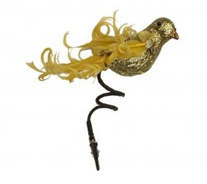 N Bird 2